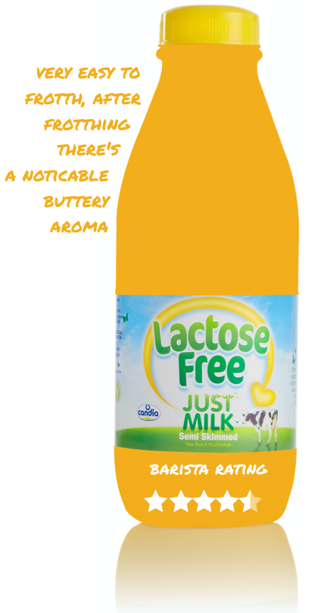 How the experts rated Lactose Free JUST MILK as an accompaniment to coffee